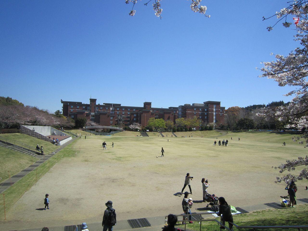 静岡県立大学の赤レンガ校舎と芝生園地の景色