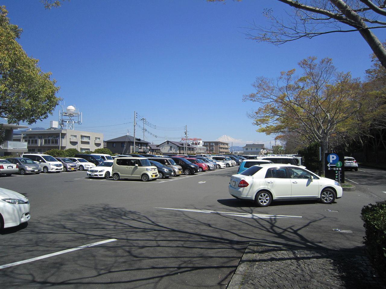 静岡県立図書館・美術館・芝生園地の駐車場はたくさんありますが、シーズンによっては混雑します。
