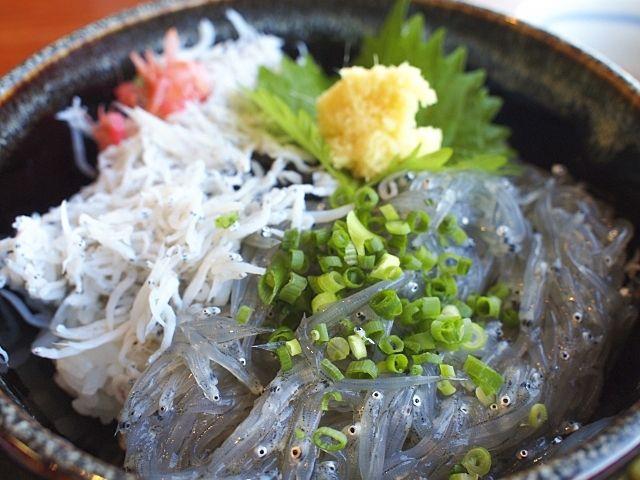 静岡市用宗漁港の釜揚げしらすと生しらすのしらす丼
